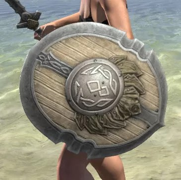 Blackreach Vanguard Maple Shield 2