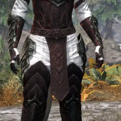 Greymoor Medium - Khajiit Female Front