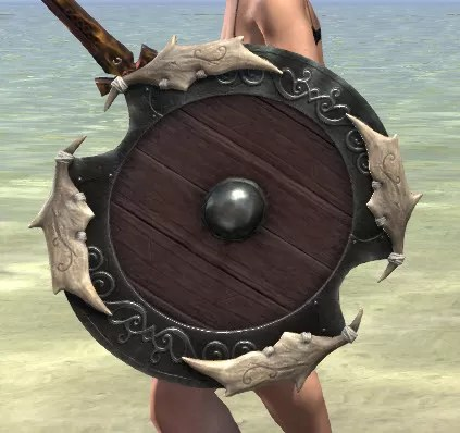 Sea Giant Shield 2