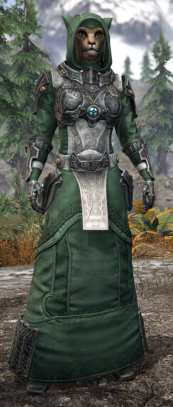 Arkthzand Armory Homespun - Khajiit Female Robe Front