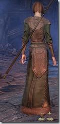 Breton Sorcerer Novice - Female Back