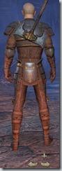 Breton Templar Novice - Male Back