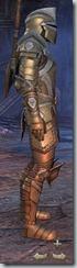 Breton Templar Veteran - Male Right