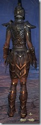 Dark Elf Nightblade Veteran - Female Back