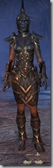 Dark Elf Nightblade Veteran - Female Front