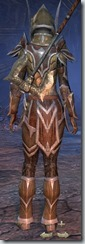 Dark Elf Templar Veteran - Female Back