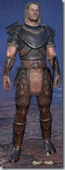 Nord Dragonknight Novice - Male Front