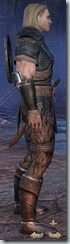 Nord Dragonknight Novice - Male Right