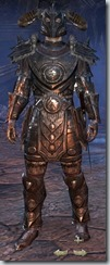 Nord Dragonknight Veteran - Male Front