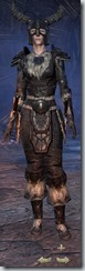 Nord Nightblade Veteran - Female Front