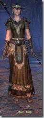 Nord Sorcerer Veteran - Female Front