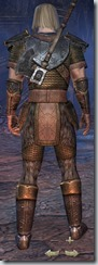 Nord Templar Novice - Male Back