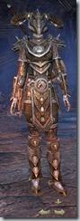 Nord Templar Veteran - Female Front