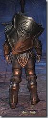 Orc Dragonknight Veteran - Male Back