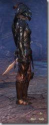 Redguard Dragonknight Veteran - Female Right