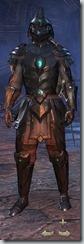 Redguard Dragonknight Veteran - Male Front