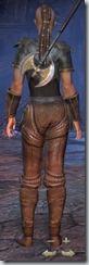 Redguard Templar Novice - Female Back