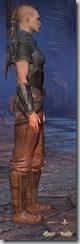Redguard Templar Novice - Female Right