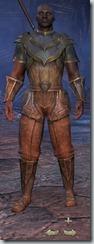 Redguard Templar Novice - Male Front