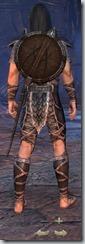 Wood Elf Dragonknight Novice - Male Back