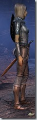 eso-high-elf-dragonknight-novice-armor-2