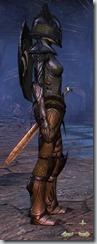 eso-high-elf-dragonknight-veteran-armor-2