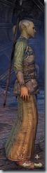eso-high-elf-sorcerer-novice-armor-male-2