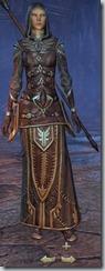 eso-high-elf-sorcerer-veteran-armor