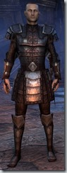 eso-imperial-dragonknight-novice-armor-male