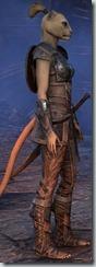 eso-khajiit-dragonknight-novice-armor-female-2