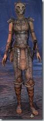 eso-khajiit-nightblade-novice-armor-female