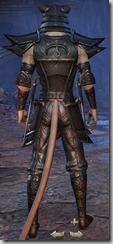 eso-khajiit-nightblade-veteran-armor-3