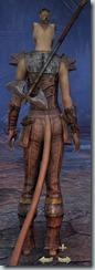 eso-khajiit-templar-novice-armor-female-3