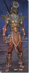 eso-khajiit-templar-veteran-armor