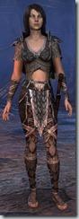 eso-wood-elf-dragonknight-novice-armor - Copy