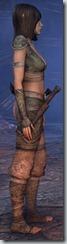 eso-wood-elf-nightblade-novice-armor-2