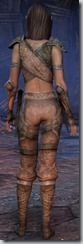 eso-wood-elf-nightblade-novice-armor-3
