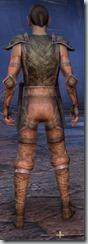 eso-wood-elf-nightblade-novice-armor-male-3