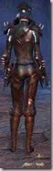 eso-wood-elf-nightblade-veteran-armor-3