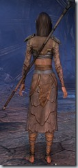 eso-wood-elf-sorcerer-novice-armor-3