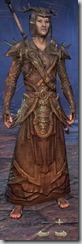 eso-wood-elf-sorcerer-veteran-armor-male