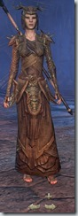 eso-wood-elf-sorcerer-veteran-armor