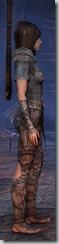 eso-wood-elf-templar-novice-armor-2