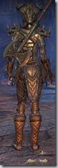eso-wood-elf-templar-veteran-armor-3