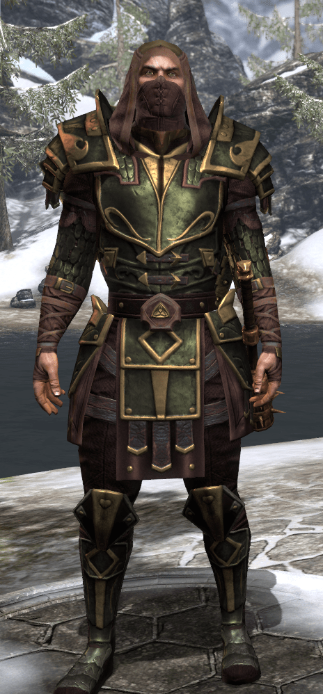 ESO Fashion Dragonknight Battlemage EU Elder