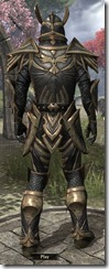 Altmer Ebon - Male 50 Superior Back