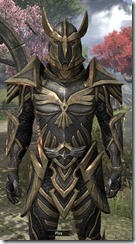 Altmer Ebon - Male 50 Superior Close Front