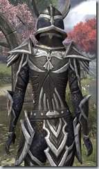 Altmer Ebon - Female 48 Fine Close Back