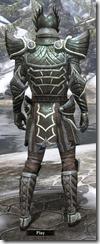 Ancient Elf Steel - Male 20-24 Normal Back