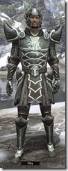 Ancient Elf Steel - Male 20-24 Normal Front